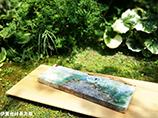 福島一紘 陶展のお知らせ写真